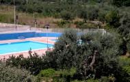 Image for D 07 - Appartamento con terrazza pranzabile